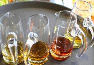 锁阳泡酒的功效_苁蓉和锁阳泡酒的功效_锁阳的功效与作用
