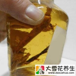 锁阳枸杞泡酒功效_韭菜子泡酒的功效_锁阳泡酒的功效与作用